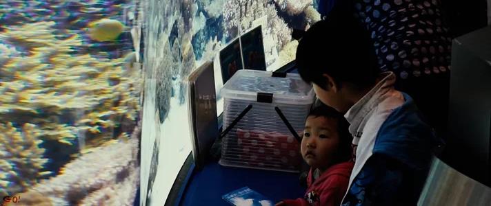 沖繩美麗海水族館介紹精華版